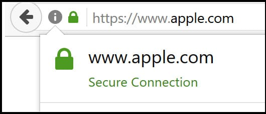 Tricking Users with Fake Domains and Punycodes