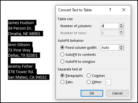 Convert Text to Table dialog and options.