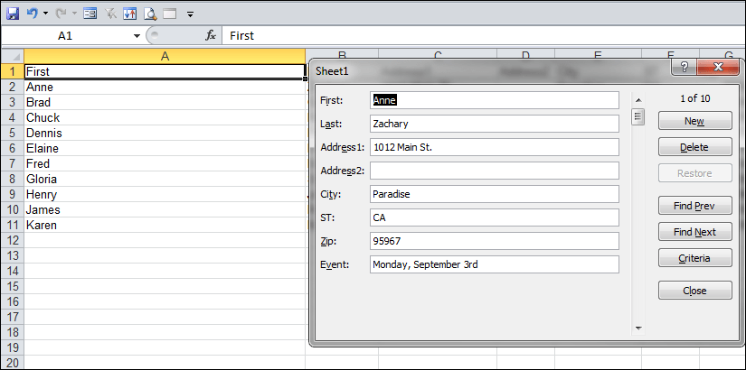 excel data form example