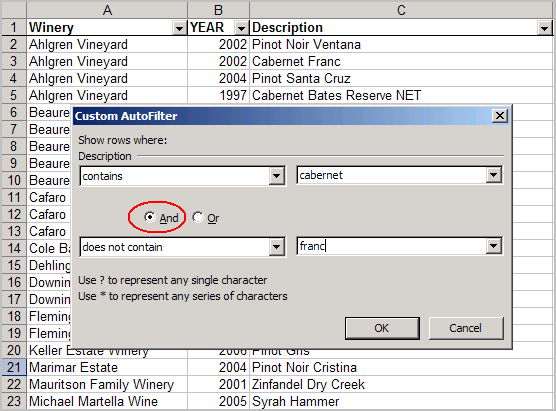 Excel autofilter with and/or filter