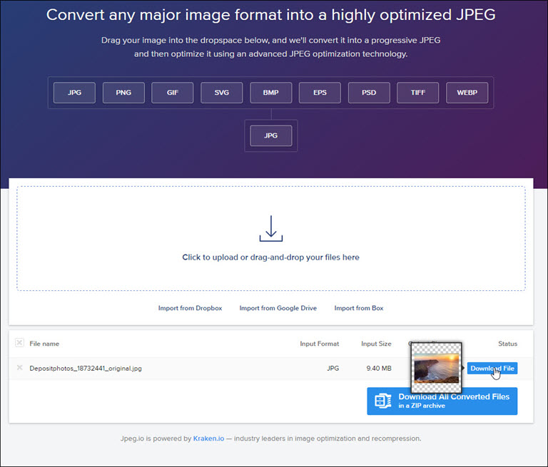 JPEGIO image and results.