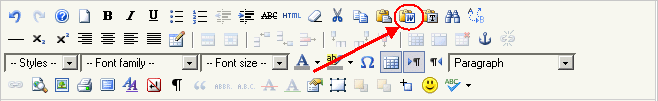 paste Word toolbar button