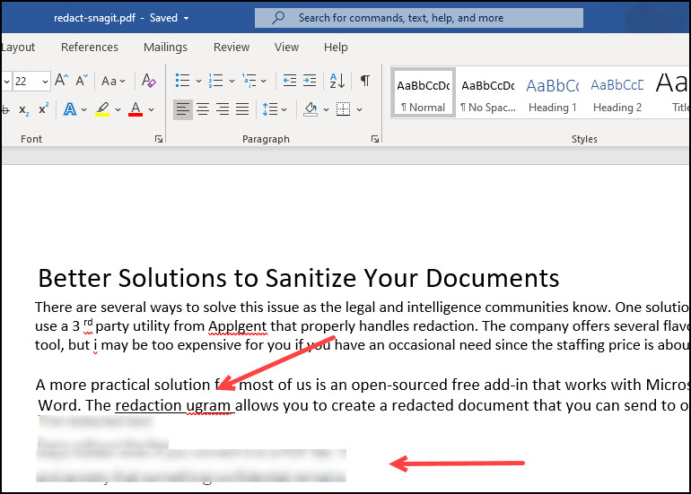 SnagIT PDF with blurred text image.