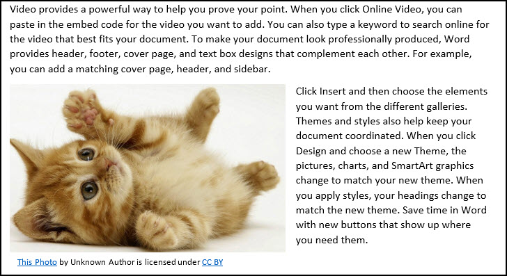 Text wrapped around kitten image on 3 sides.