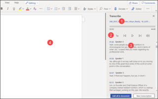 Transcribe pane and editor with callout options.